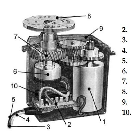 Cấu tạo cơ bản của một động cơ (motor) servo